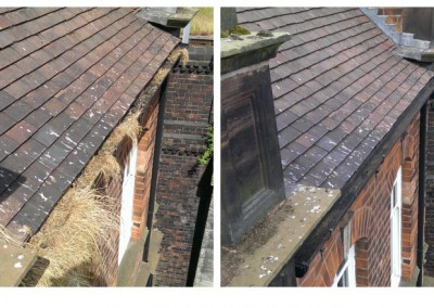 high-access-gutter-cleaning-lichfield